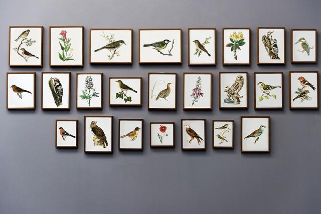 obrázky ptáků